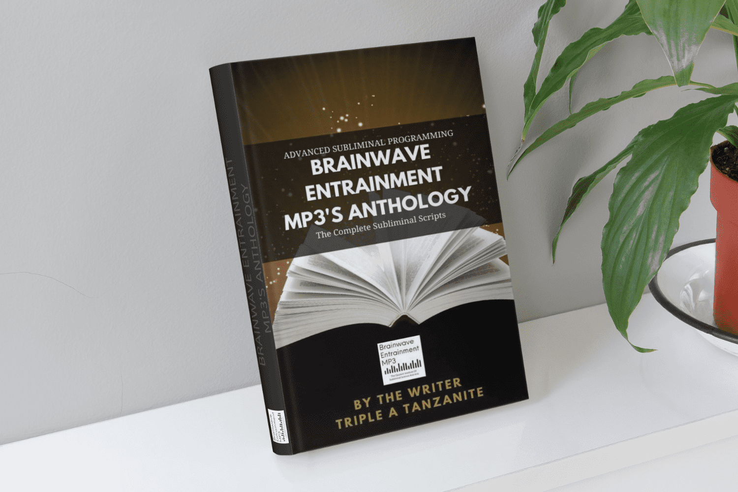 Brainwave Entrainment MP3's Anthology: The Complete Subliminal Scripts - Brainwave Entrainment MP3