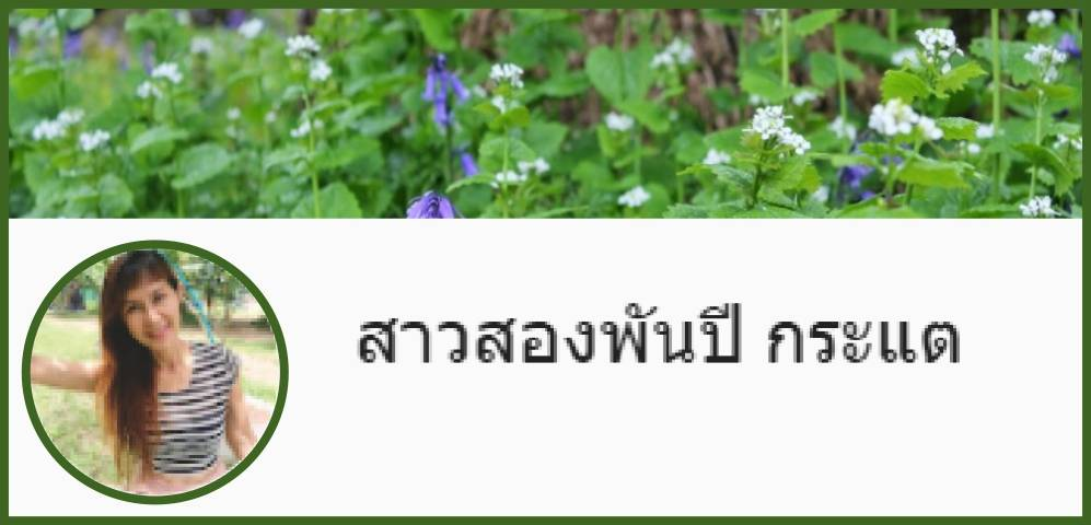 green meadow header with circuar picture of Ms.Katae indicating a video blog available though im in Hua Hin dot com