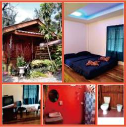 montage image showing wooden bungalow, bed in bedroom, bathroom area and television area