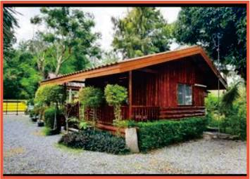 wooden bungalow with ornate bushes in garden resort