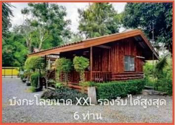 wooden bungaow capabable of sleeping 6 people in garden resort