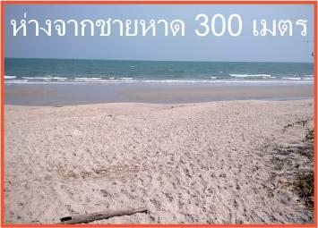 sandy beach and blue sky