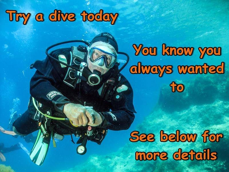 try a dive