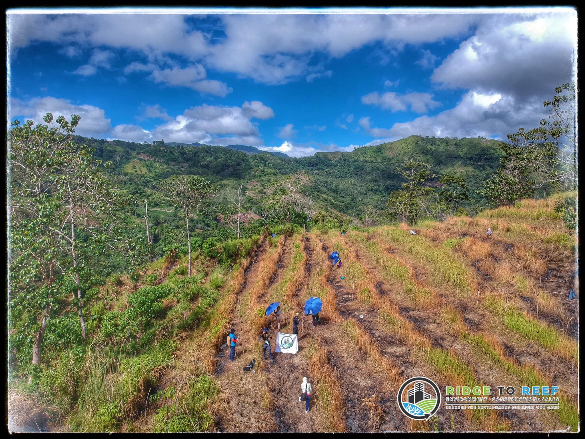 rtr-tree-planting